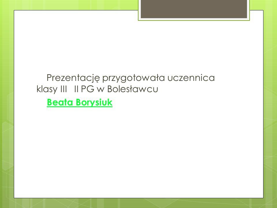 Prezentację przygotowała uczennica klasy III II PG w Bolesławcu Beata Borysiuk
