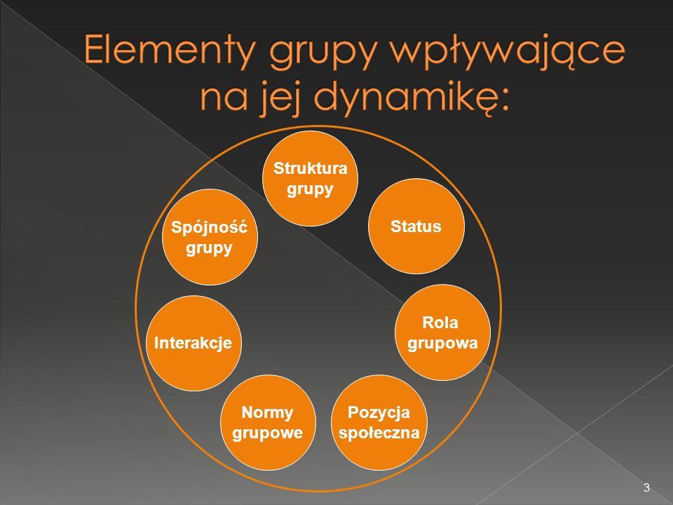 Elementy grupy wpływające na jej dynamikę: