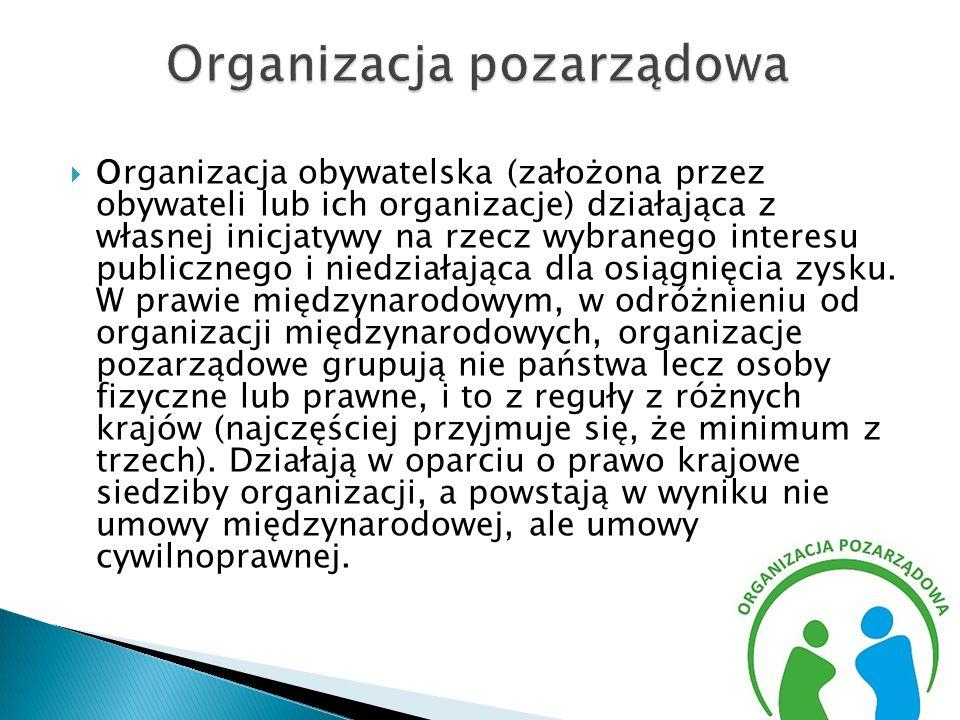 Organizacja pozarządowa