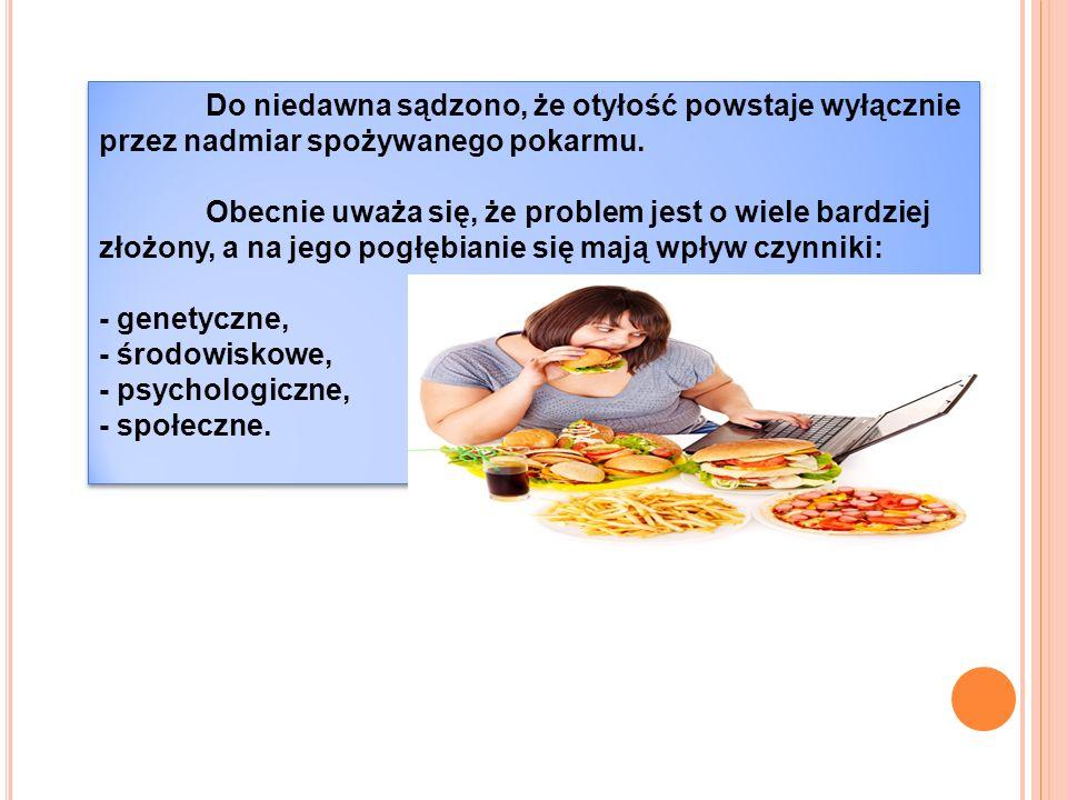 Do niedawna sądzono, że otyłość powstaje wyłącznie przez nadmiar spożywanego pokarmu.