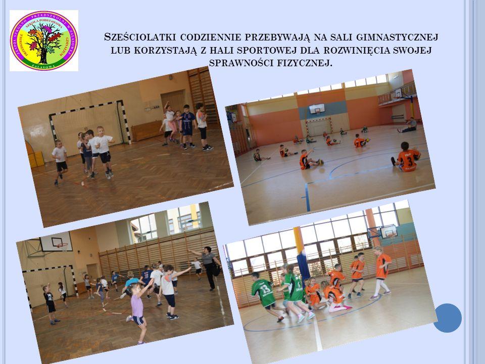 Sześciolatki codziennie przebywają na sali gimnastycznej lub korzystają z hali sportowej dla rozwinięcia swojej sprawności fizycznej.
