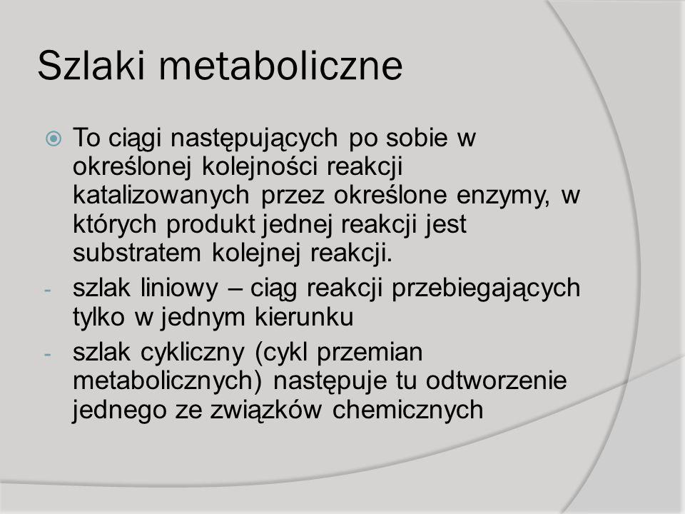 Szlaki metaboliczne