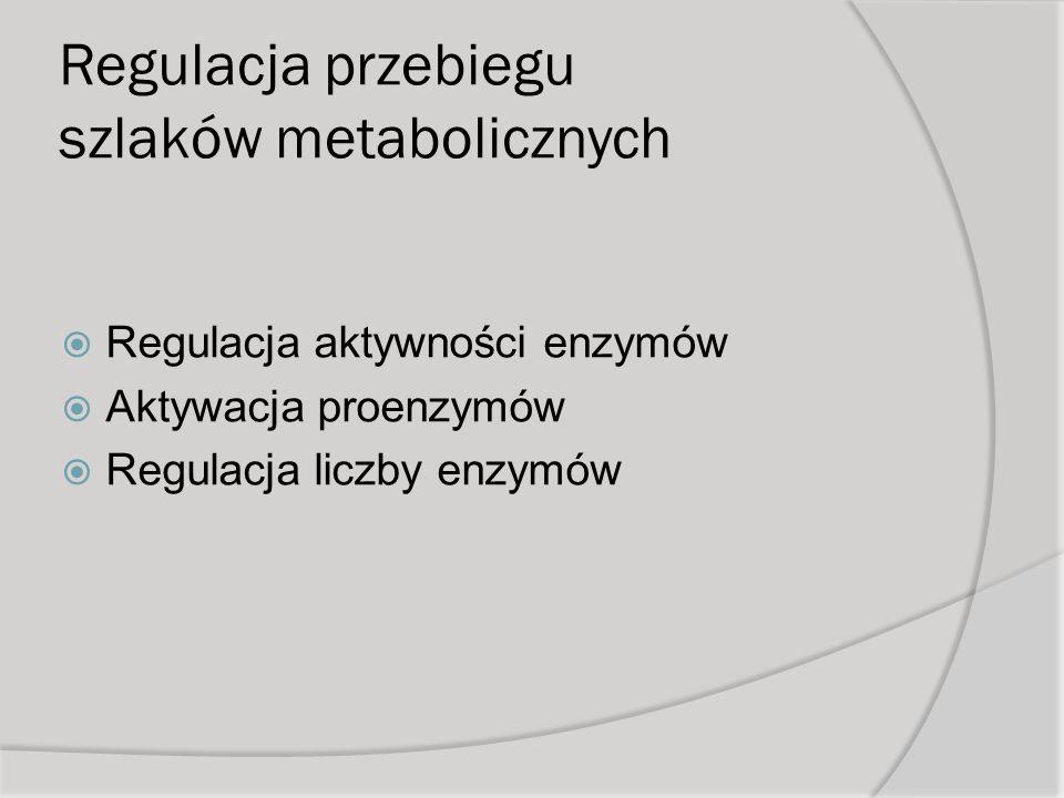 Regulacja przebiegu szlaków metabolicznych