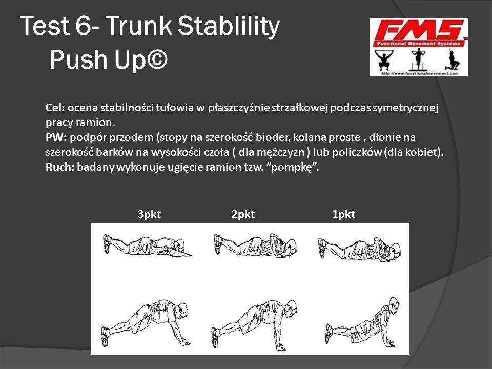 Test 6- Trunk Stablility Push Up©