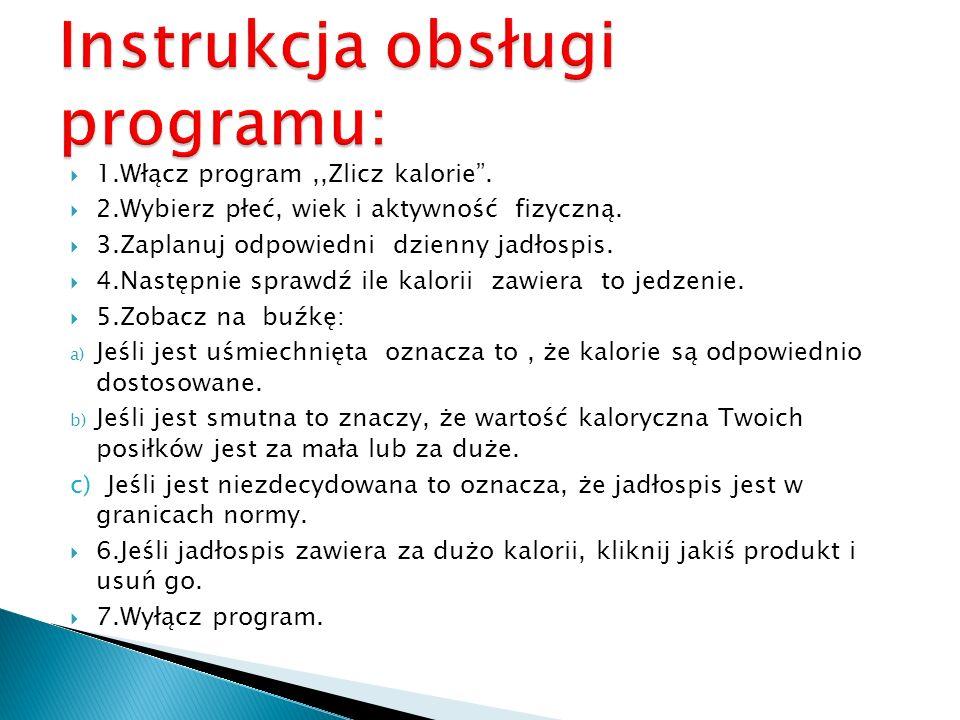Instrukcja obsługi programu: