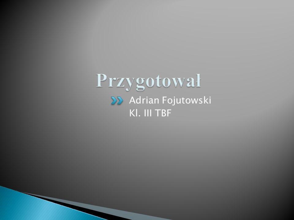 Przygotował Adrian Fojutowski Kl. III TBF