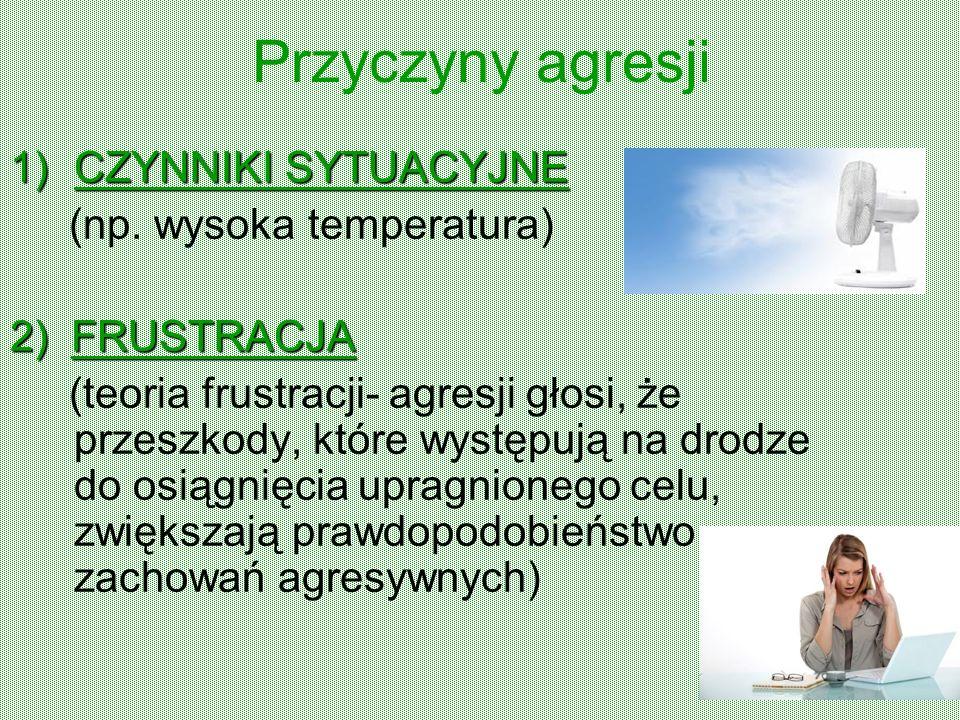 Przyczyny agresji CZYNNIKI SYTUACYJNE (np. wysoka temperatura)