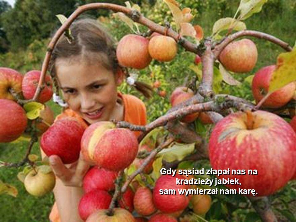 Gdy sąsiad złapał nas na kradzieży jabłek,