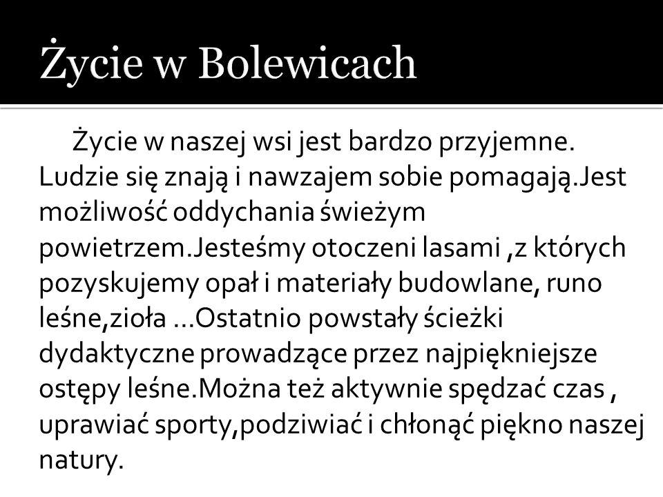 Życie w Bolewicach