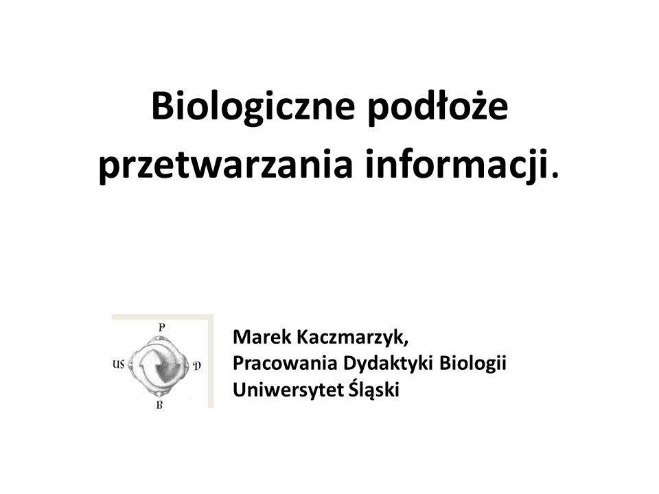 Biologiczne podłoże przetwarzania informacji.
