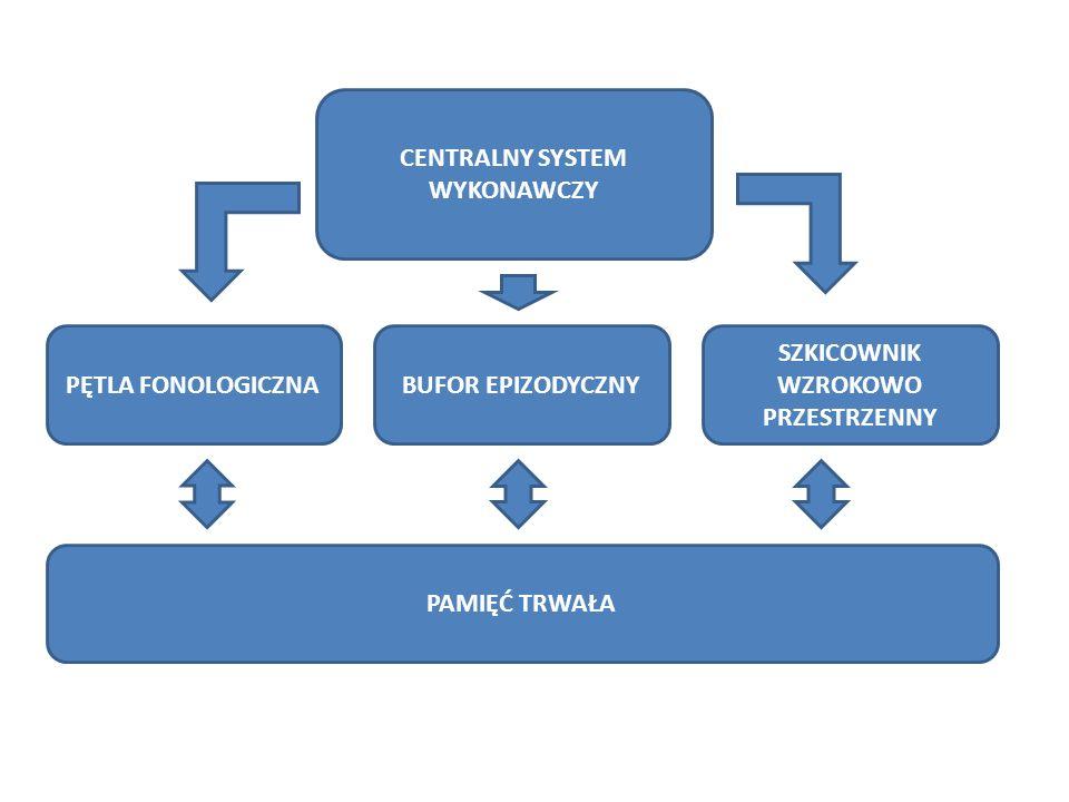 CENTRALNY SYSTEM WYKONAWCZY SZKICOWNIK WZROKOWO PRZESTRZENNY