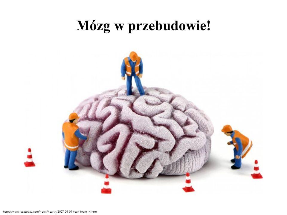 Mózg w przebudowie! http://www.usatoday.com/news/health/2007-04-04-teen-brain_N.htm