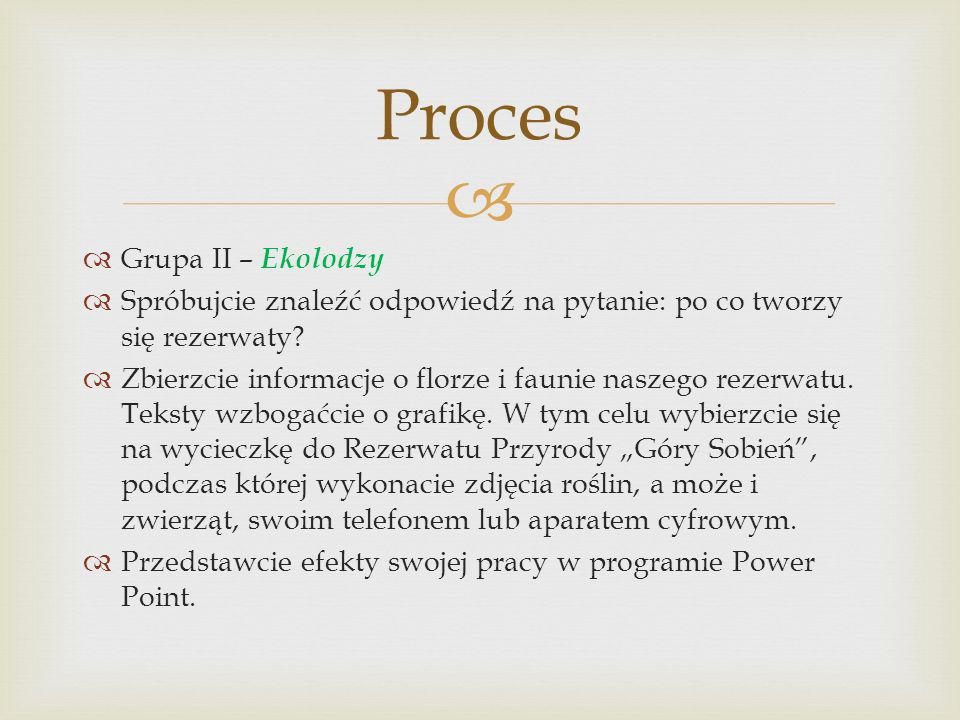 Proces Grupa II – Ekolodzy