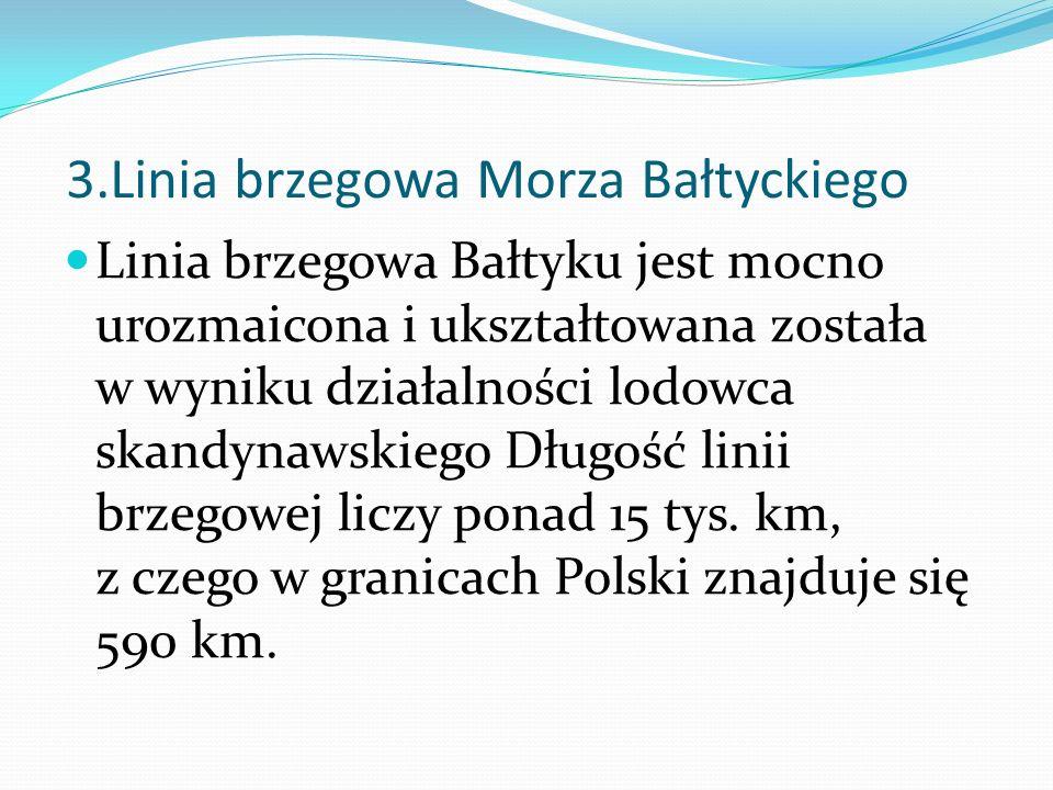 3.Linia brzegowa Morza Bałtyckiego