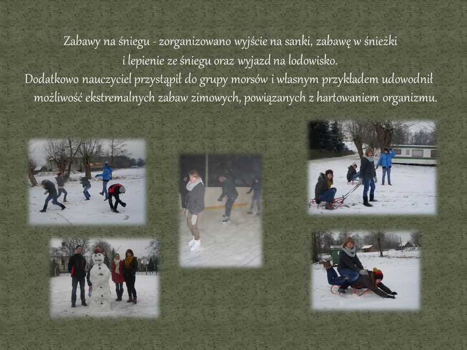 Zabawy na śniegu - zorganizowano wyjście na sanki, zabawę w śnieżki i lepienie ze śniegu oraz wyjazd na lodowisko.
