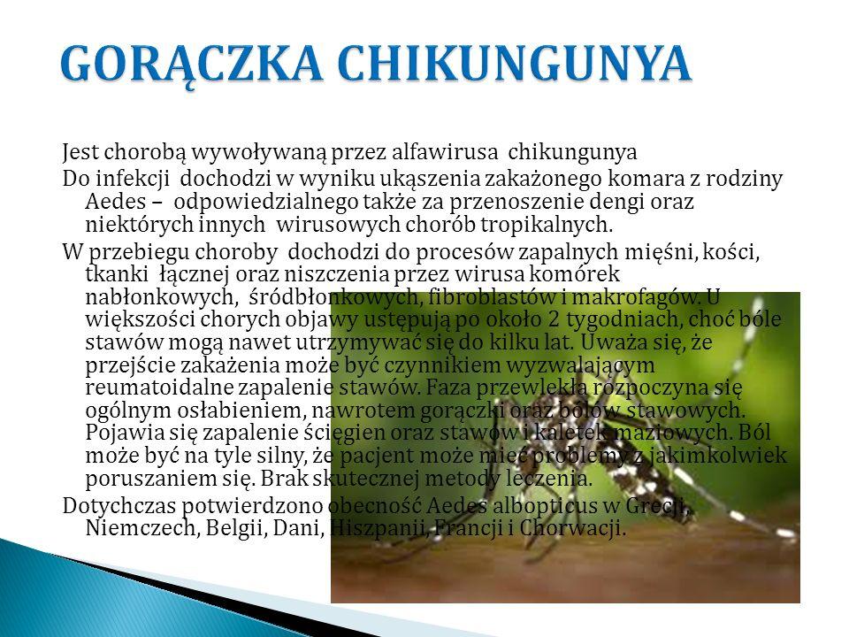 GORĄCZKA CHIKUNGUNYA Jest chorobą wywoływaną przez alfawirusa chikungunya.