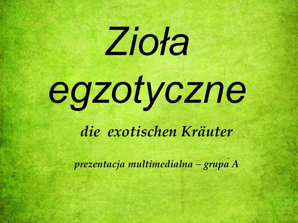 die exotischen Kräuter prezentacja multimedialna – grupa A