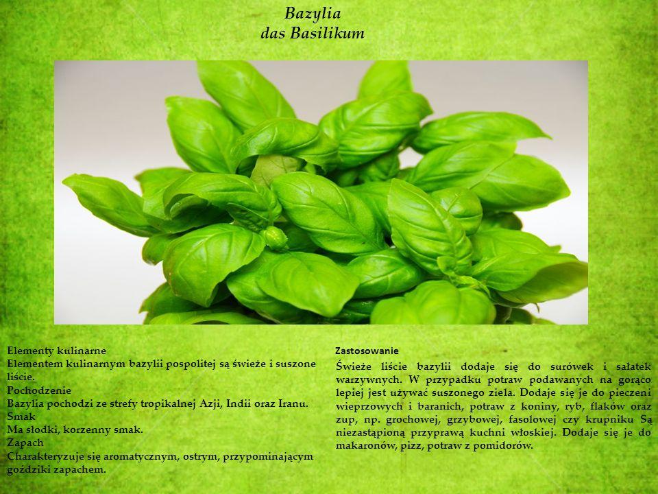 Bazylia das Basilikum Elementy kulinarne
