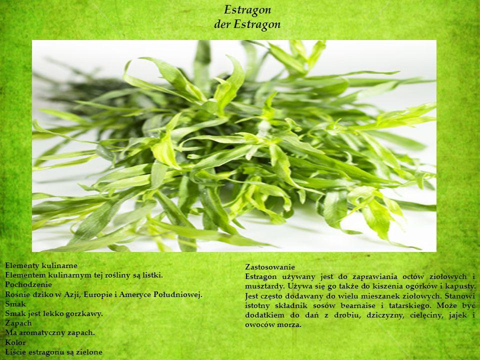 Estragon der Estragon Elementy kulinarne Zastosowanie