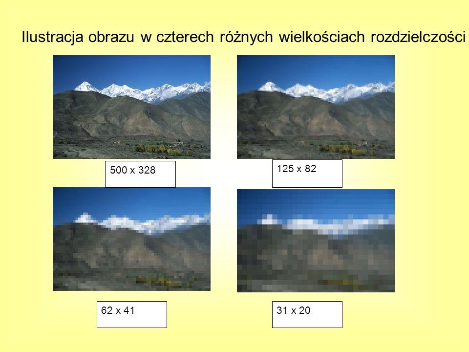 Ilustracja obrazu w czterech różnych wielkościach rozdzielczości