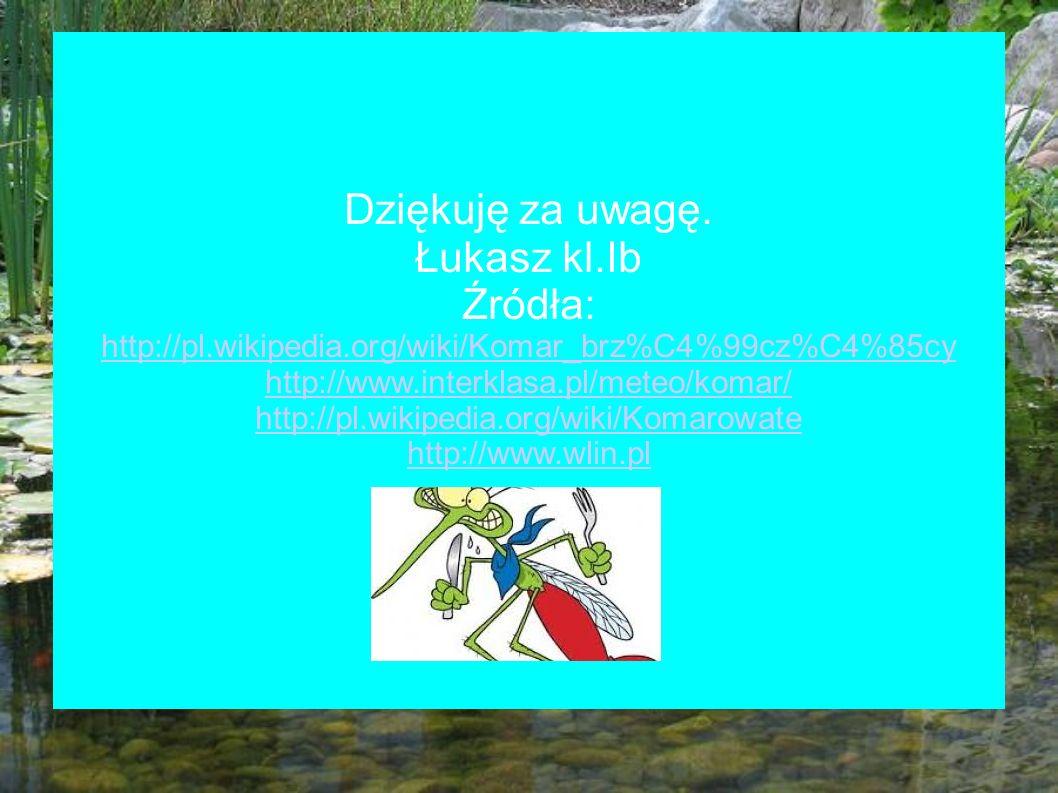 http://pl.wikipedia.org/wiki/Komarowate http://www.wlin.pl