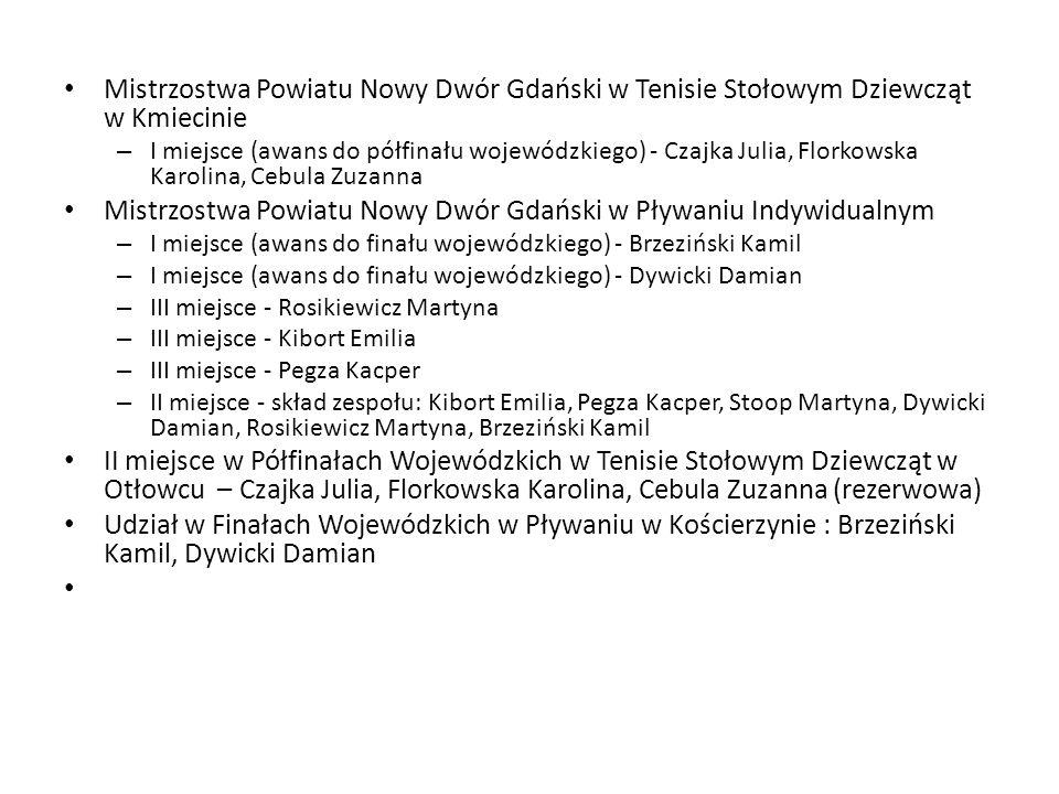Mistrzostwa Powiatu Nowy Dwór Gdański w Pływaniu Indywidualnym