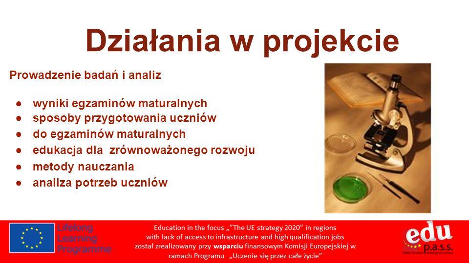 Działania w projekcie Prowadzenie badań i analiz
