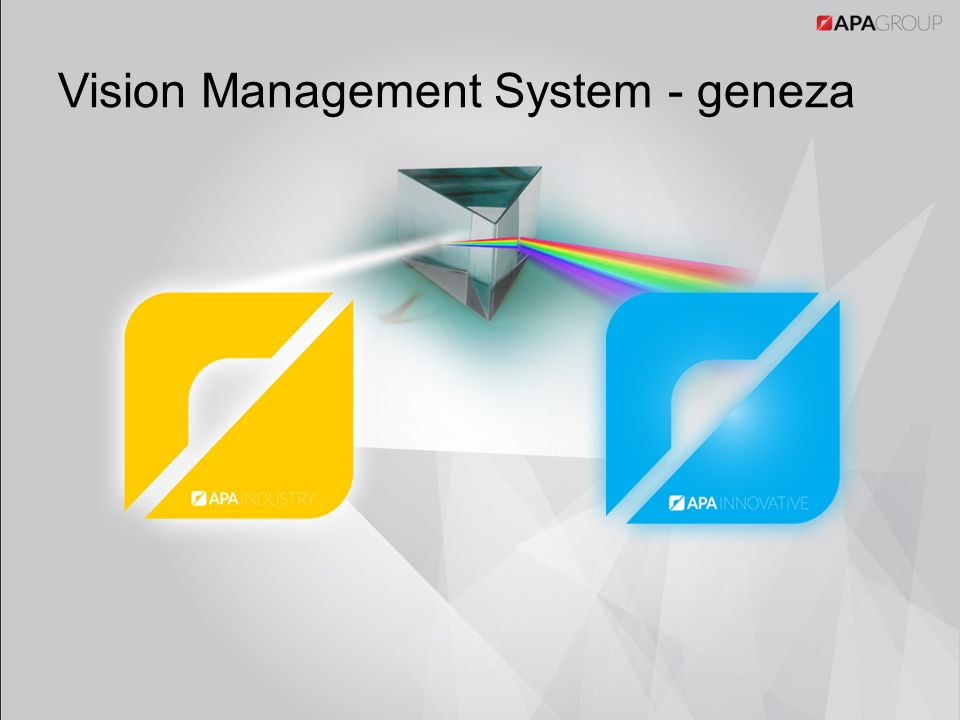 Vision Management System - geneza