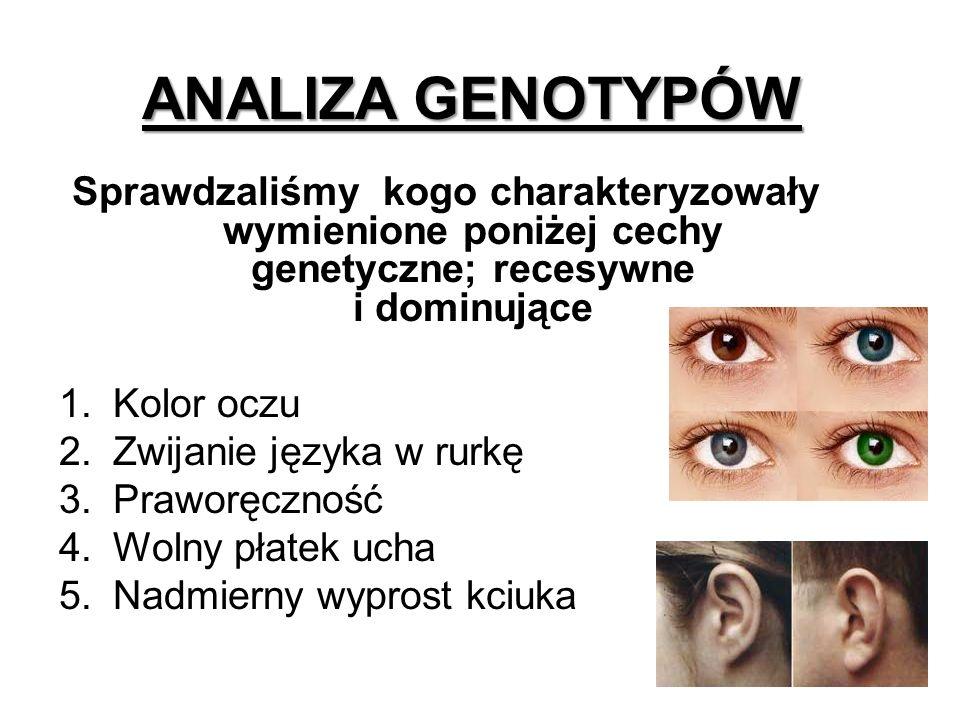 ANALIZA GENOTYPÓW Sprawdzaliśmy kogo charakteryzowały wymienione poniżej cechy genetyczne; recesywne i dominujące.