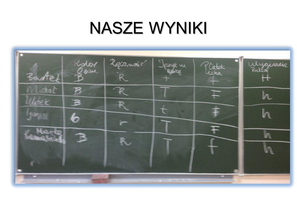 Nasze Wyniki Na obecnym slajdzie przedstawiono nasze wyniki
