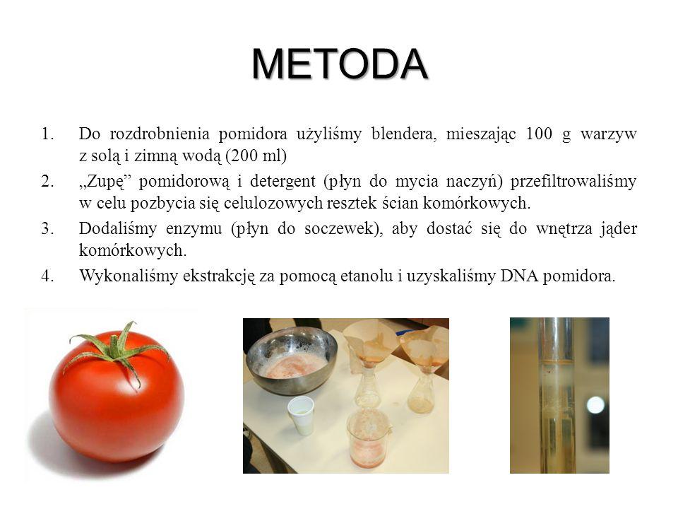 METODA Do rozdrobnienia pomidora użyliśmy blendera, mieszając 100 g warzyw z solą i zimną wodą (200 ml)