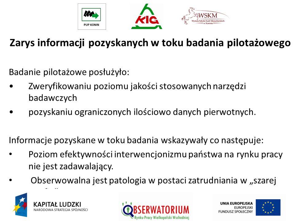 Zarys informacji pozyskanych w toku badania pilotażowego