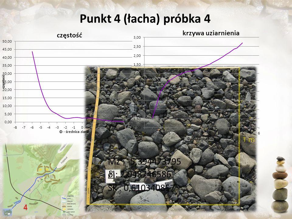 Punkt 4 (łacha) próbka 4 Mz : -5,394473795 δ : 2,048746586