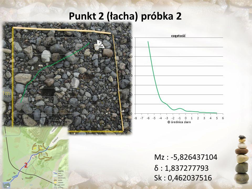 Punkt 2 (łacha) próbka 2 Mz : -5,826437104 δ : 1,837277793