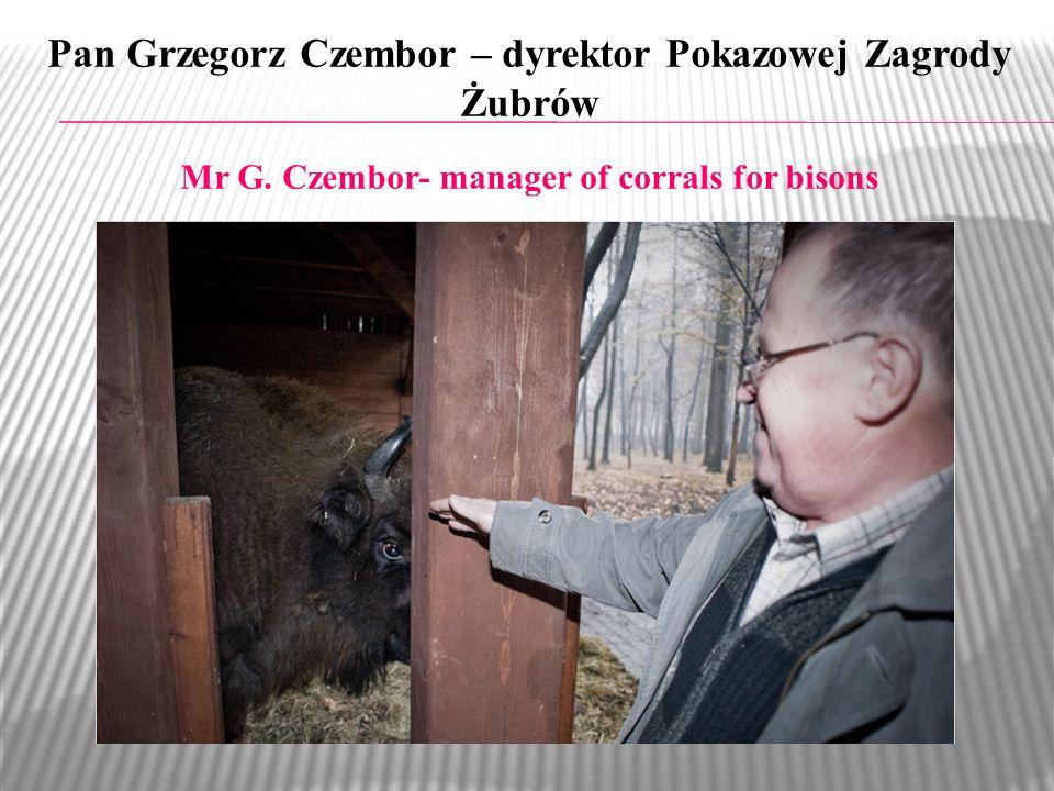 Pan Grzegorz Czembor – dyrektor Pokazowej Zagrody Żubrów