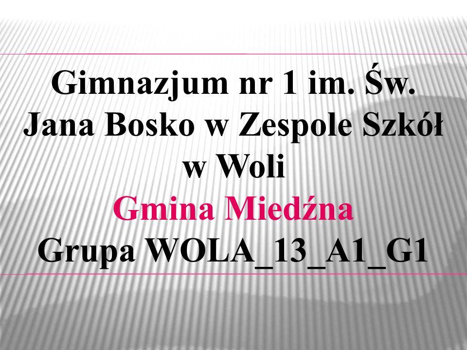 Gimnazjum nr 1 im. Św. Jana Bosko w Zespole Szkół w Woli