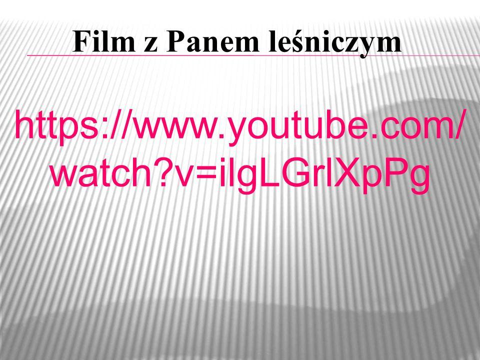 Film z Panem leśniczym https://www.youtube.com/watch v=ilgLGrlXpPg