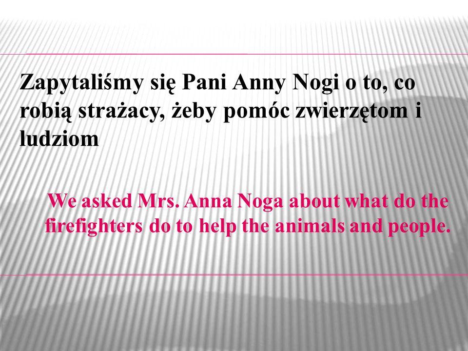 Zapytaliśmy się Pani Anny Nogi o to, co robią strażacy, żeby pomóc zwierzętom i ludziom
