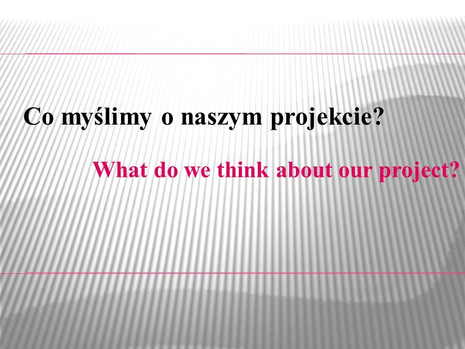 Co myślimy o naszym projekcie