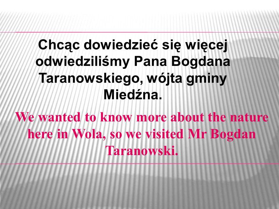 Chcąc dowiedzieć się więcej odwiedziliśmy Pana Bogdana Taranowskiego, wójta gminy Miedźna.