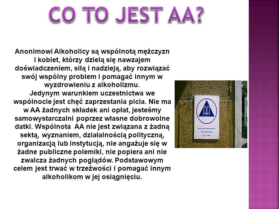 CO TO JEST AA