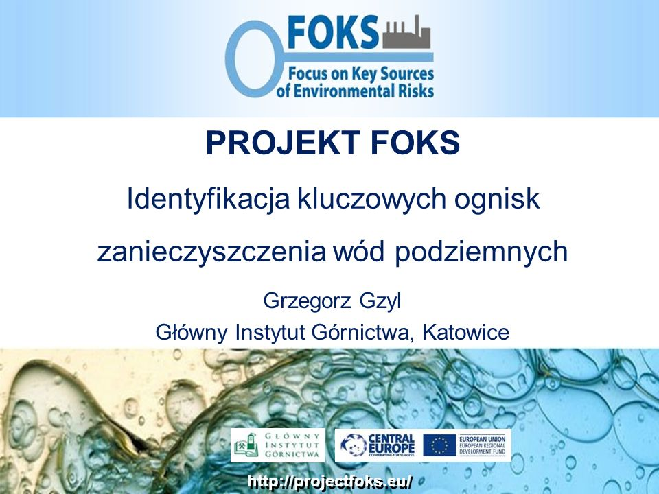 Grzegorz Gzyl Główny Instytut Górnictwa, Katowice