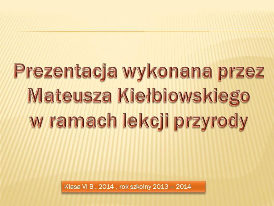 Prezentacja wykonana przez Mateusza Kiełbiowskiego w ramach lekcji przyrody