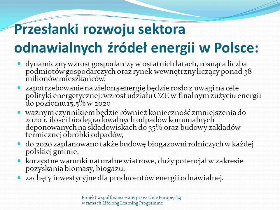 Przesłanki rozwoju sektora odnawialnych źródeł energii w Polsce:
