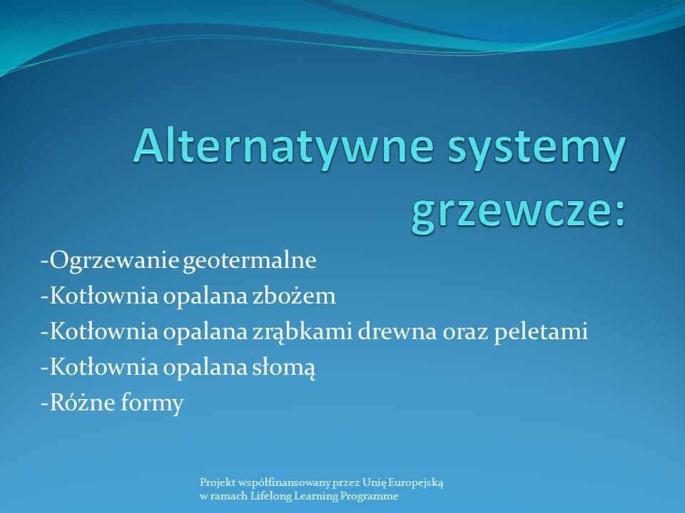 Alternatywne systemy grzewcze: