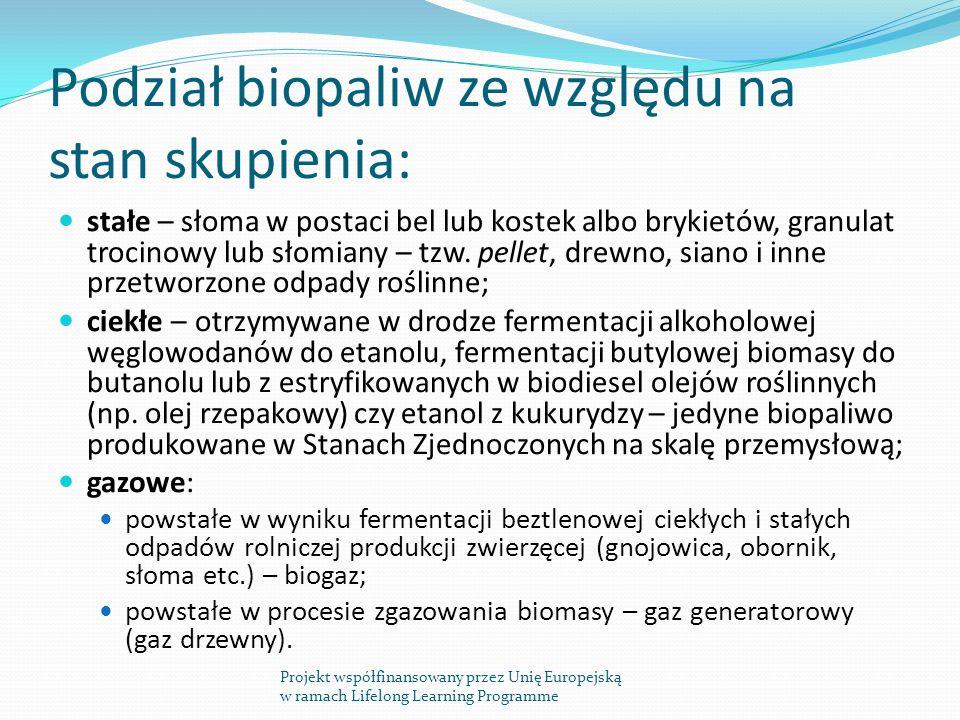 Podział biopaliw ze względu na stan skupienia:
