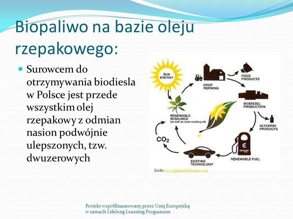 Biopaliwo na bazie oleju rzepakowego: