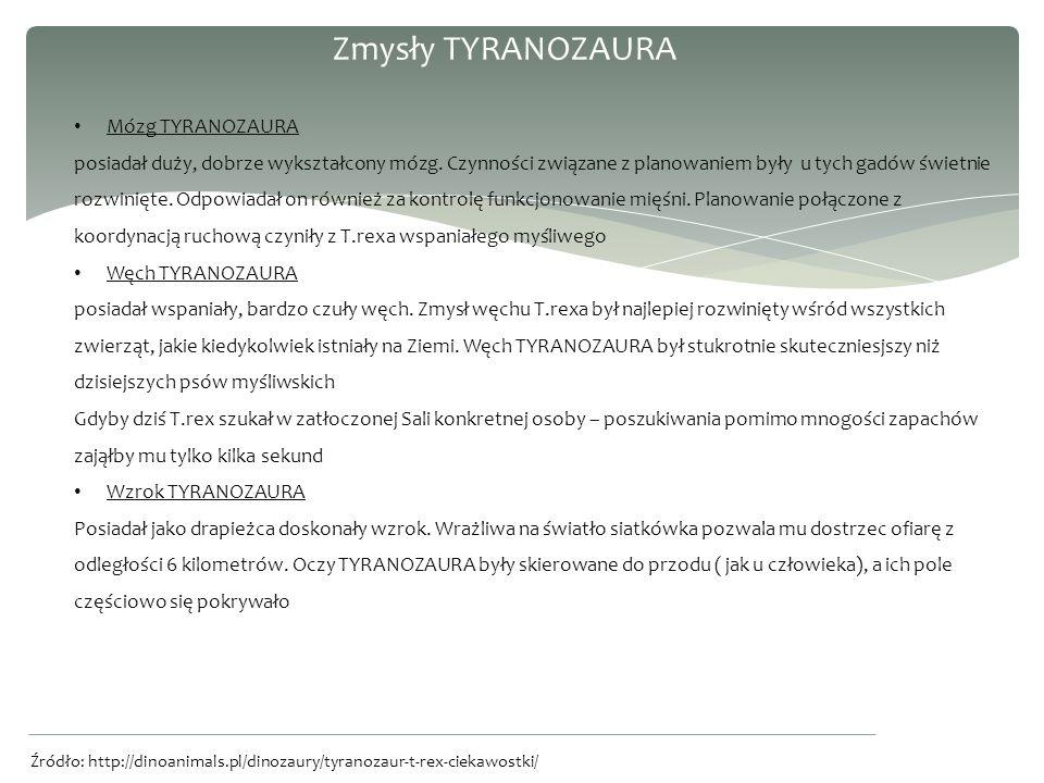 Zmysły TYRANOZAURA Mózg TYRANOZAURA