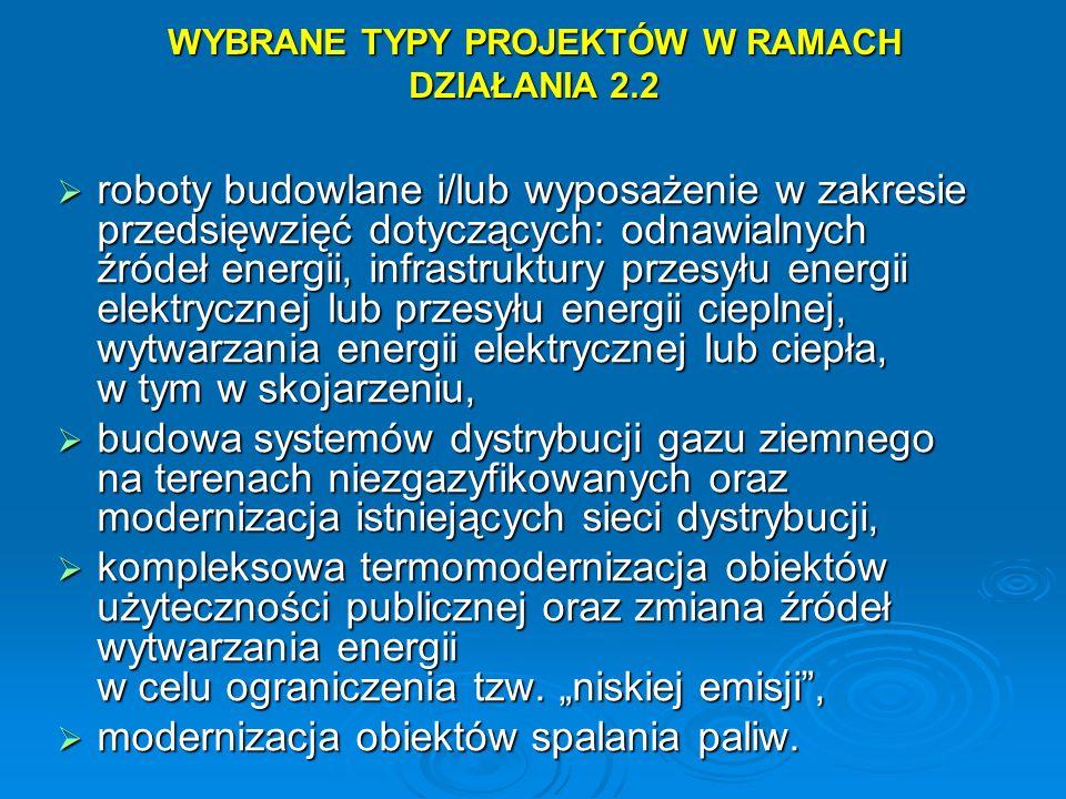 WYBRANE TYPY PROJEKTÓW W RAMACH DZIAŁANIA 2.2