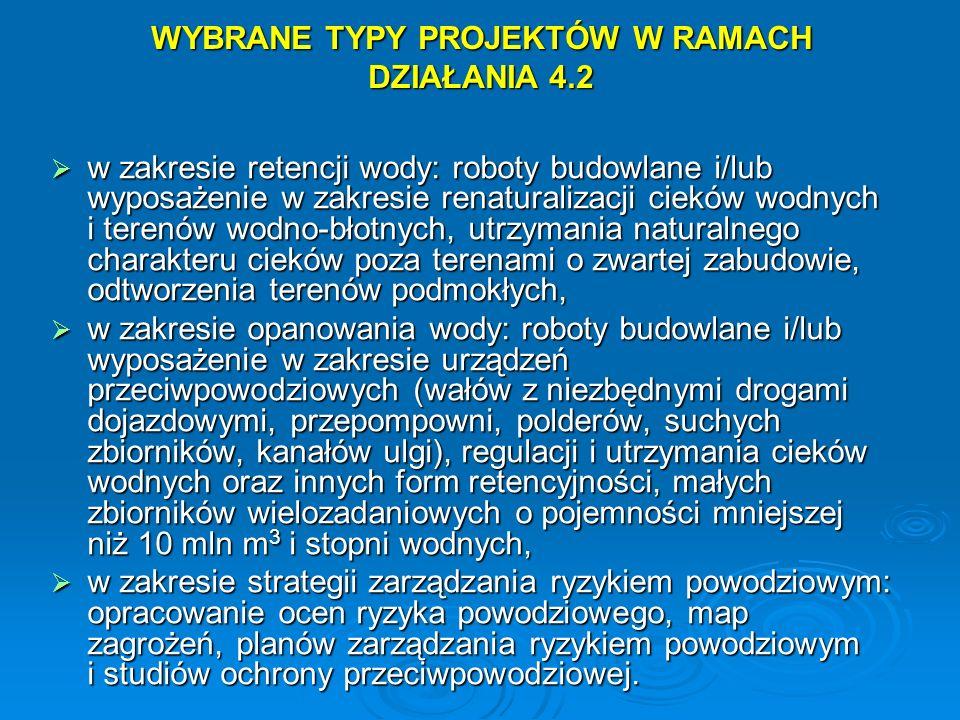 WYBRANE TYPY PROJEKTÓW W RAMACH DZIAŁANIA 4.2